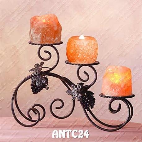 ANTC24