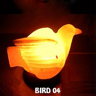 BIRD 04