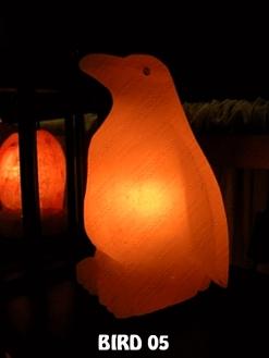 BIRD 05