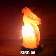 BIRD 08