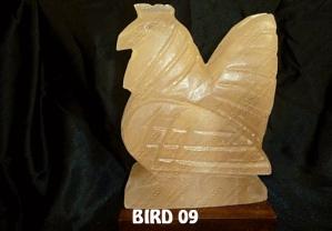 BIRD 09