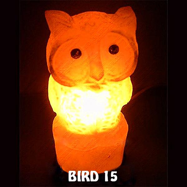 BIRD 15