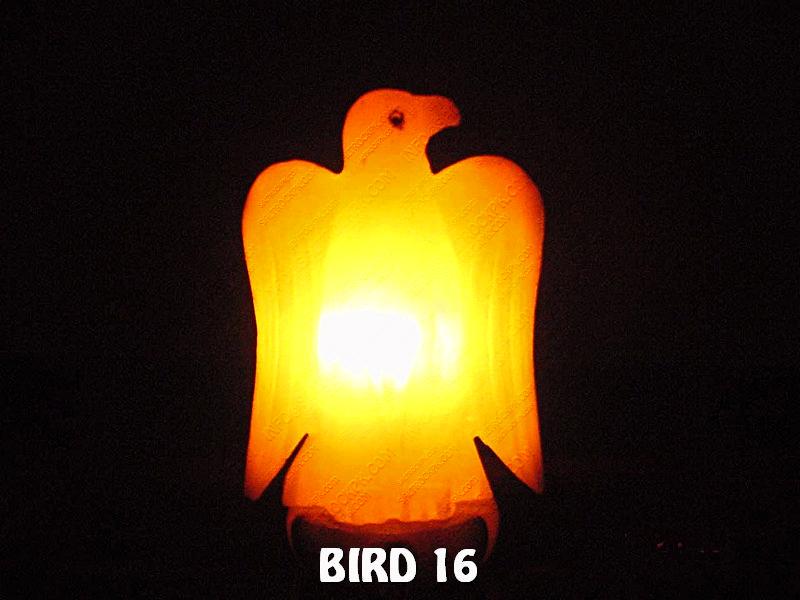 BIRD 16