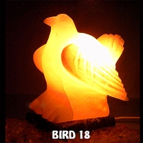 BIRD 18
