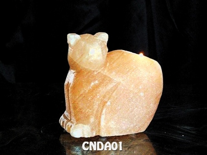 CNDA01