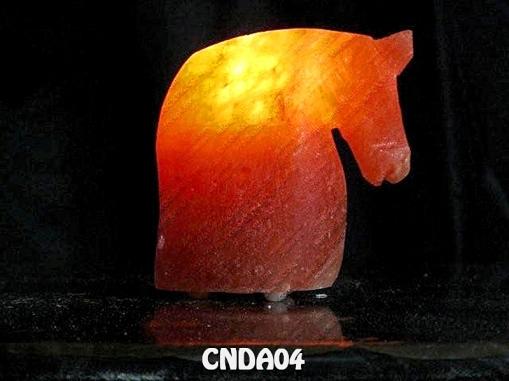 CNDA04