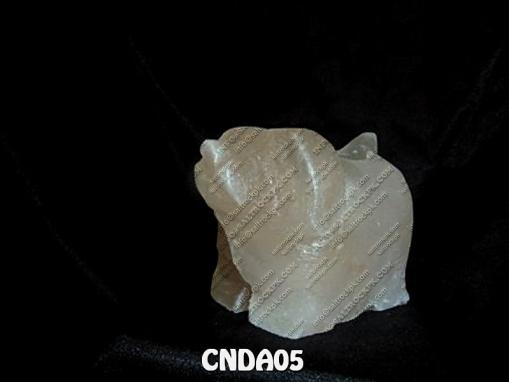 CNDA05