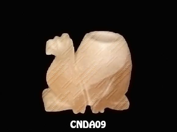CNDA09