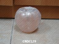 CNDCL29