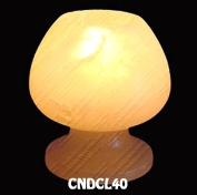 CNDCL40