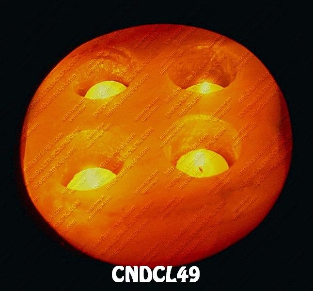 CNDCL49