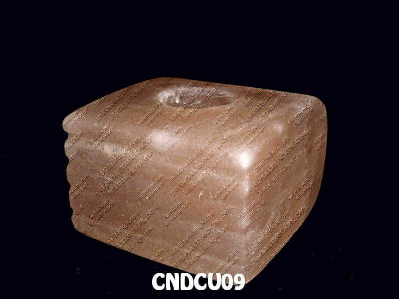 CNDCU09