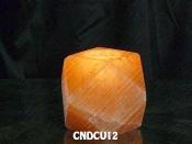 CNDCU12