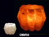 CNDF03