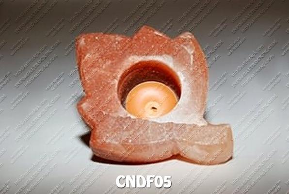 CNDF05