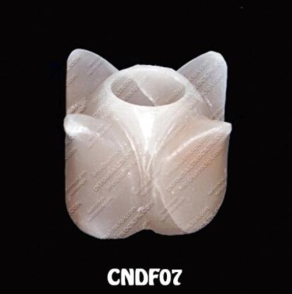 CNDF07
