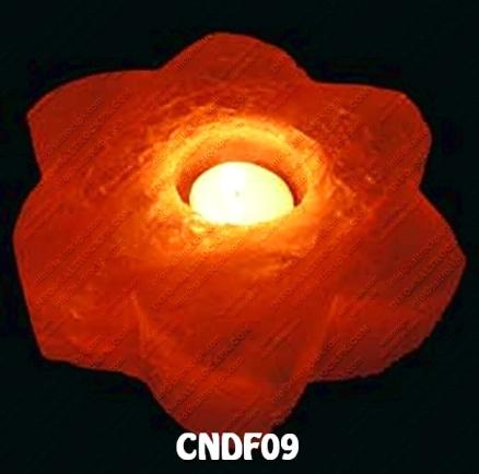 CNDF09