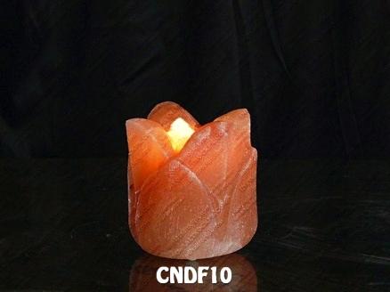 CNDF10
