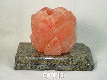 CNDF12