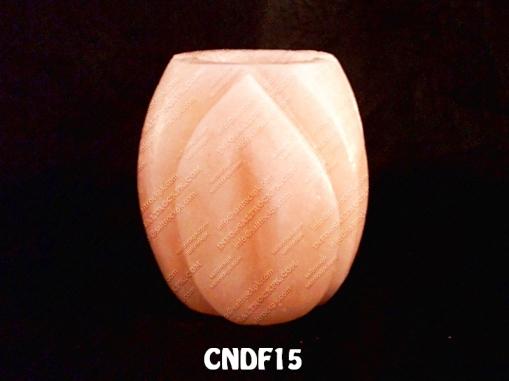 CNDF15