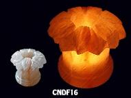 CNDF16