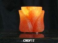CNDF17