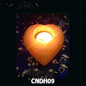 CNDH09