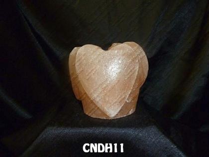 CNDH11
