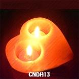 CNDH13