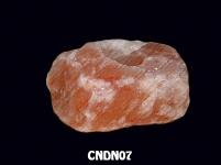 CNDN07