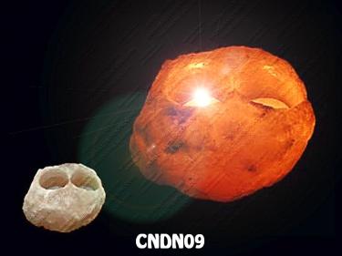 CNDN09