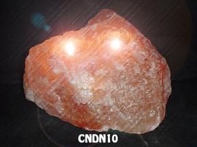 CNDN10