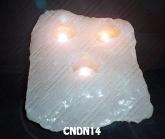 CNDN14