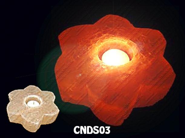 CNDS03