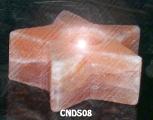 CNDS08