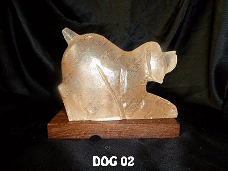 DOG 02