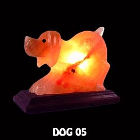 DOG 05