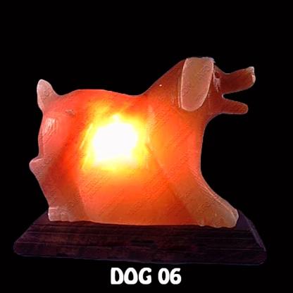 DOG 06