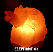 ELEPHANT 03