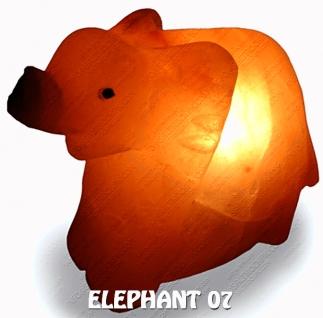 ELEPHANT 07