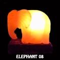 ELEPHANT 08