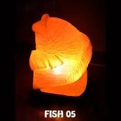 FISH 05