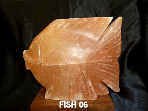 FISH 06