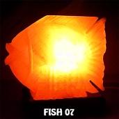 FISH 07