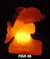 FISH 08