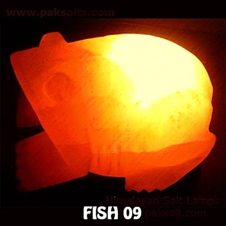 FISH 09