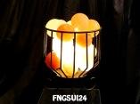 FNGSUI24