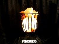FNGSUI30