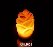 GFLR01
