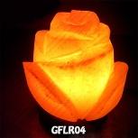 GFLR04